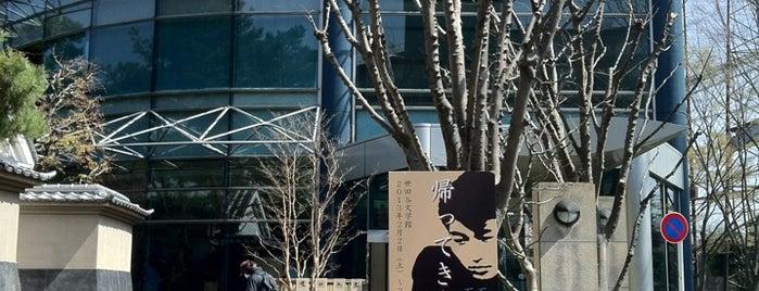 Setagaya Literary Museum is one of Jpn_Museums2.