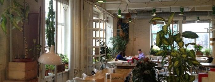 Зелёная комната is one of Рестораны с нереальным видом.