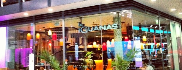 Las Iguanas is one of Booze Cruise.