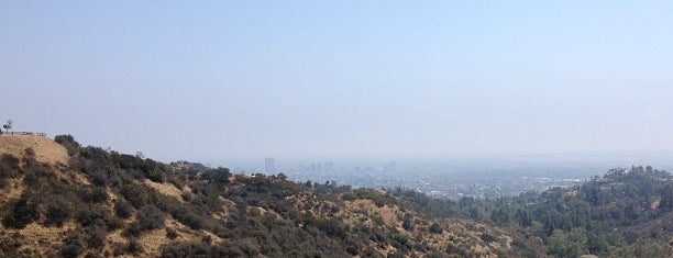 Griffith Park is one of 87 Free Things To Do in LA.