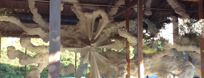 Inujima Art House Project / F-Art House / Biota (Fauna/Flora) is one of Art Setouchi & Setouchi Triennale - 瀬戸内国際芸術祭.