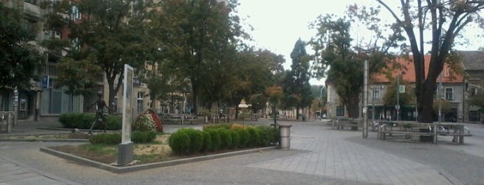 Trg dr Zorana Đinđića is one of Parks and city squares in Belgrade.