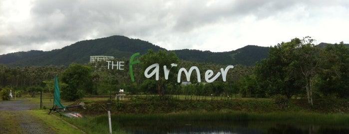 The Farmer is one of Ko Samui Paradise = Peter's Fav's.