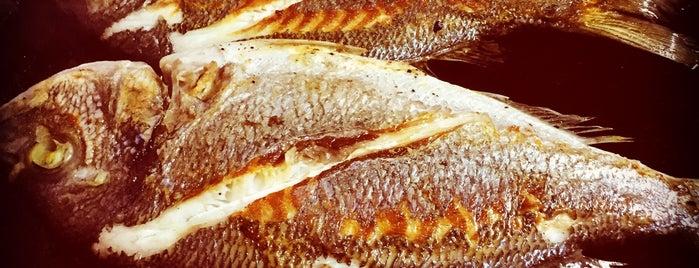 Bumba Balık is one of antalya~ alanya~ side~belek.