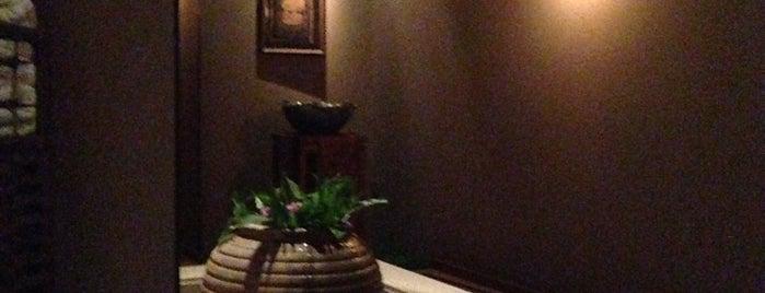 Bodhi 菩提 is one of Date Night.