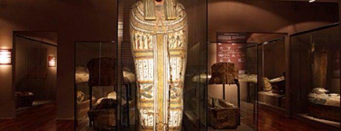 Museu Egipci de Barcelona - Fundació Arqueològica Clos is one of Barcelona : Museums & Art Galleries.