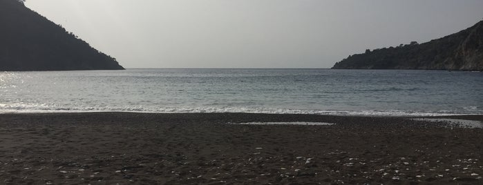 Kargıcak Koyu is one of Tatil rotası.