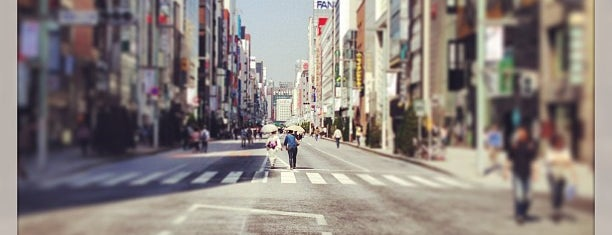 Ginza is one of future place to eat and visit.