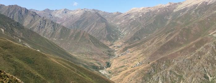 Çiçekli Yaylası is one of Kamp.