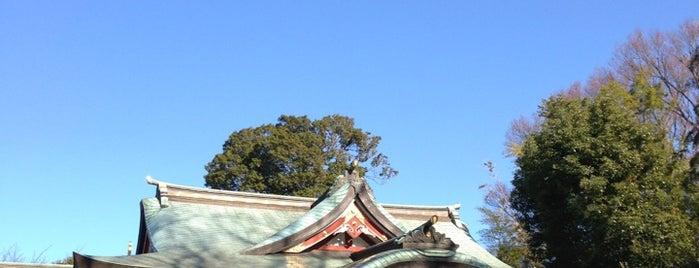 武蔵野八幡宮 is one of 訪れた宗教センター.