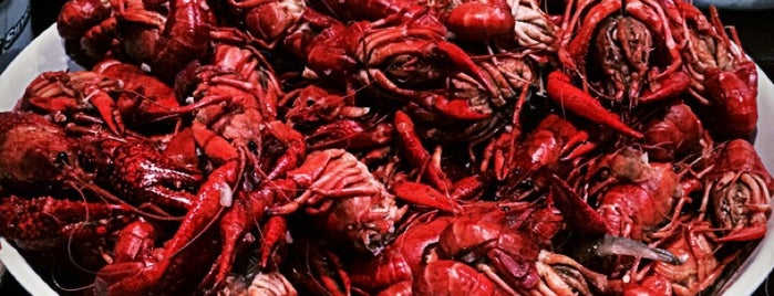 Must-see seafood places in Gonzales, LA