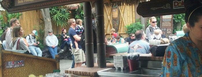 Tiki Juice Bar is one of Disneyland Fun!!!.