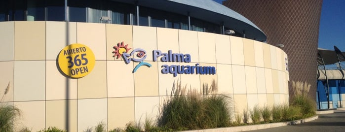 Palma Aquarium is one of All-time favorites in Spain.