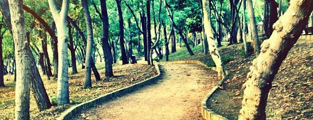 Maçka Demokrasi Parkı is one of İstanbul.