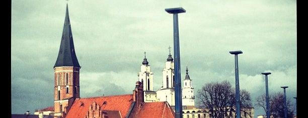 Kaunas is one of cities.