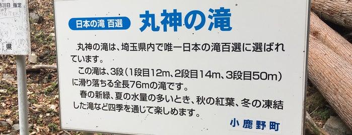 丸神の滝 is one of 日本の滝百選.