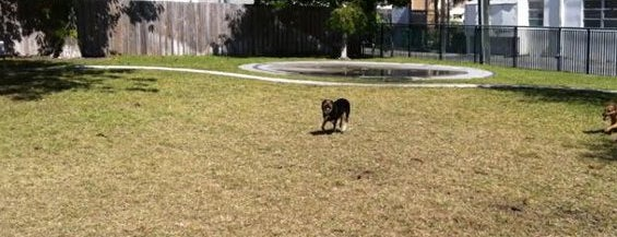 Washington Avenue Micro-Park is one of Miami New Times 2013.