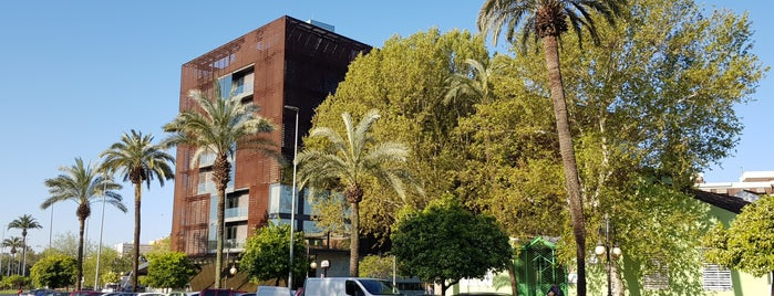 Hotel Eurostars Palace ***** is one of Córdoba.
