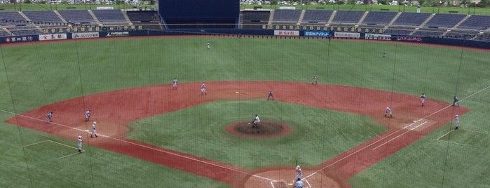Hard Off Eco Stadium Niigata is one of Japan Baseball Studium.
