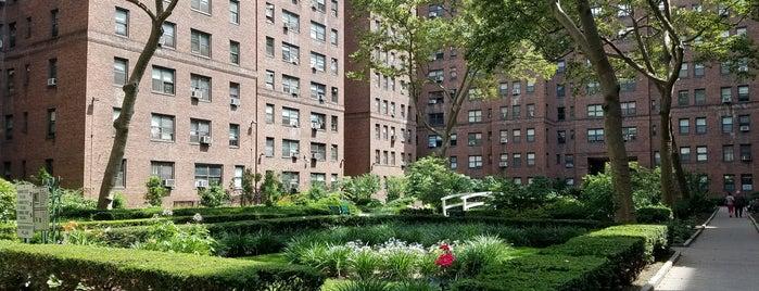 Knickerbocker Village is one of New York New York.