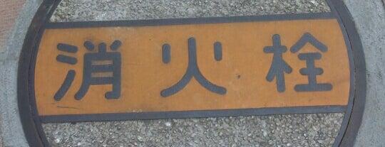 神奈川県トラック総合会館前の消火栓マンホールの上 is one of 何コレ10.