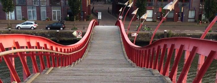 Pythonbrug of Hoge Brug (Brug 1998) is one of Amsterdam Architectural.