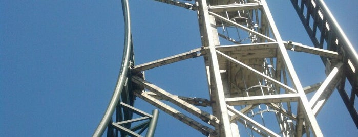 Untamed is one of FamilyFun's Top Amusement Park Rides.