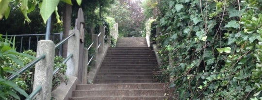 Coit Steps is one of Road Trip.