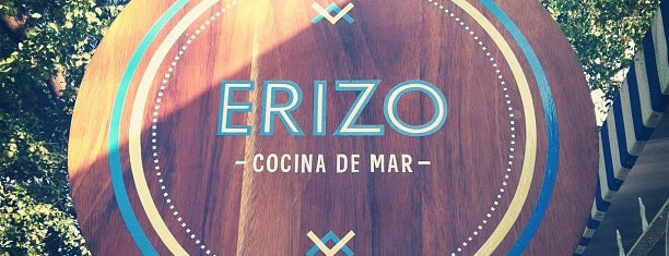 Erizo - Cocina de Mar is one of Guadalajara . México.