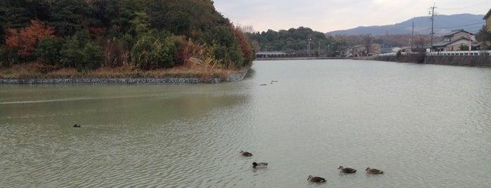 コナベ池(小奈辺古墳) is one of Great outdoor in NARA.