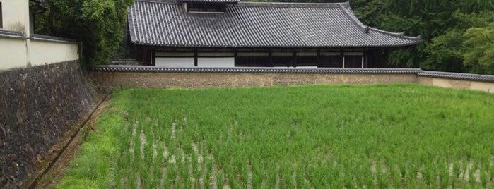 東大寺 供田 is one of Great outdoor in NARA.