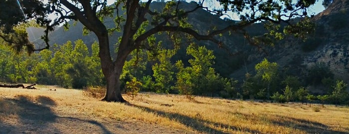 Malibu Creek State Park is one of 100 Cheap Date Ideas in LA.