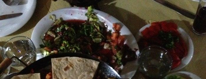 Irmak Restaurant is one of Lezzet Durakları.
