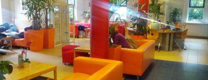 Stayokay Amsterdam Vondelpark is one of Hosteles.