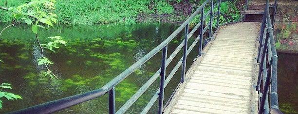 Верхний Головинский пруд is one of парки сао.