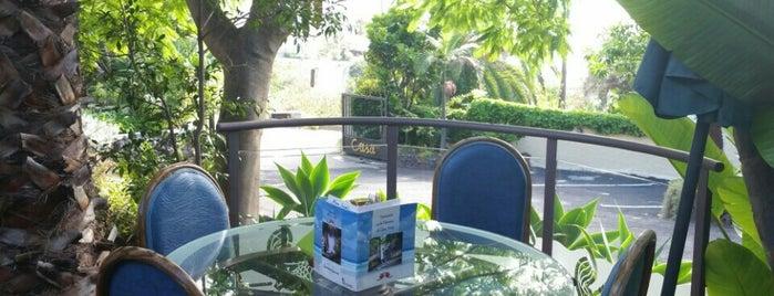 Casa Juan de los Ahumados is one of Tenerife: restaurantes y guachinches..