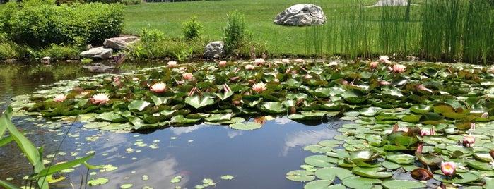 Hahn Horticulture Garden is one of Virginia Tech.