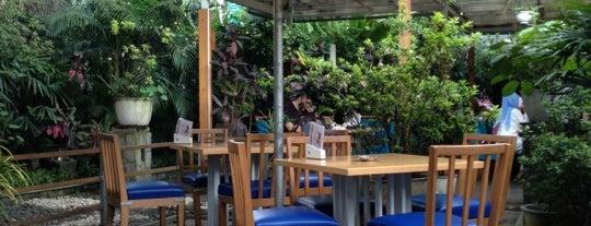 Café Halaman is one of Bandung Kuliner.
