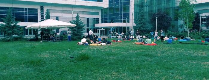 TOBB Ekonomi ve Teknoloji Üniversitesi is one of okullar.