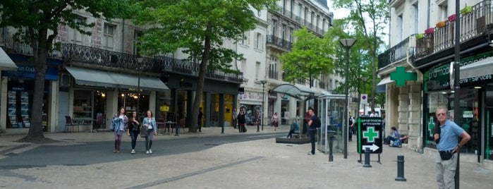 Place Franklin Roosevelt is one of Saumur.