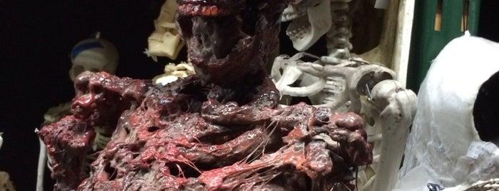 Dapper Cadaver is one of Nikki Kreuzer's Offbeat L.A..