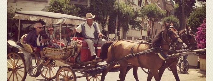 Büyükada Meydan is one of İstanbulda gezeceğim 100 şey.
