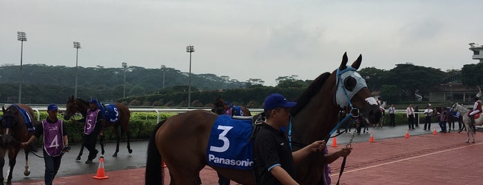 Singapore Turf Club is one of Fly.