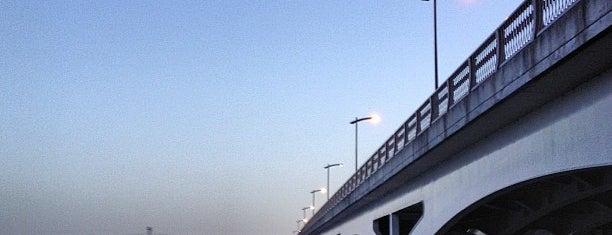 手賀大橋 is one of サイクリング.