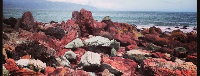Red Rocks Seal Colony is one of The coolest little capital in the world.