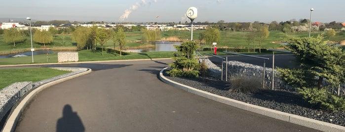 Hundefreundliche Golfplätze