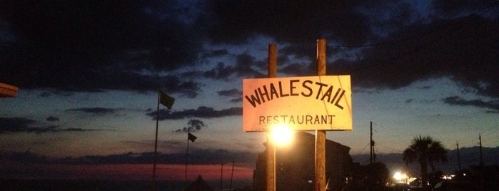 Whales Tail is one of The Best of the North Florida Gulf Coast.