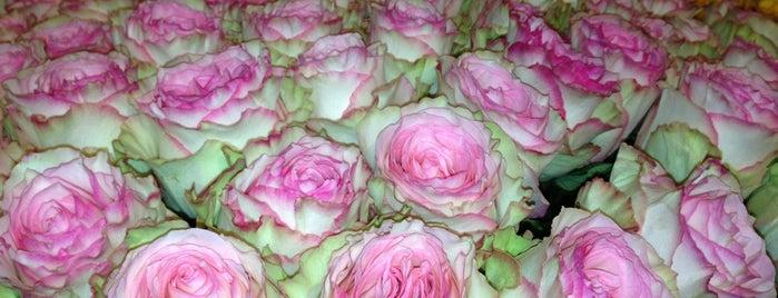 Цветочный рынок is one of Theseplacesdoexist.