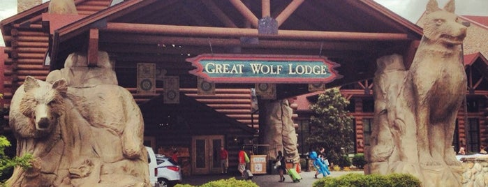 Great Wolf Lodge is one of Hotel.