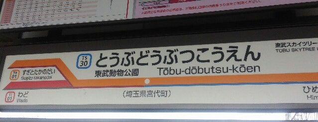 Tōbu-Dōbutsu-Kōen Station (TS30) is one of 遠く.